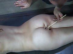 BDSM, Big Butts, Bondage, Brunette