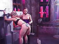 Brunette, Lesbian, Big Boobs, Group Sex